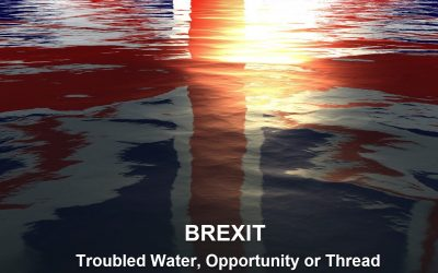 Brexit, Troubled Waters, Opportunity or Thread?